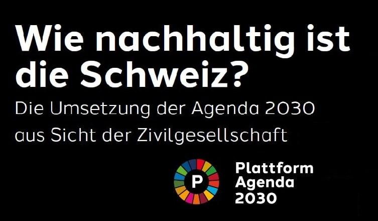 Deckblatt des Berichtes: Wie nachhaltig ist die Schweiz? Die Umsetzung der Agenda 2030 aus Sicht der Zivilgesellschaft. Weisse Schrifft auf schwarzem Hintergrund und Logo der Plattform.