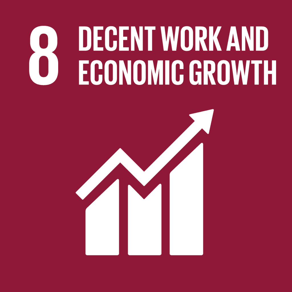 Picture of the SDG Goal 8: Decent work and economic development