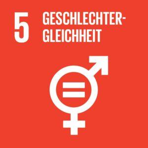 SDG Icon DE 05