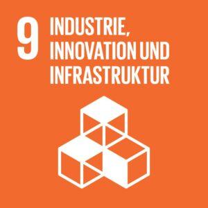 SDG Icon DE 09