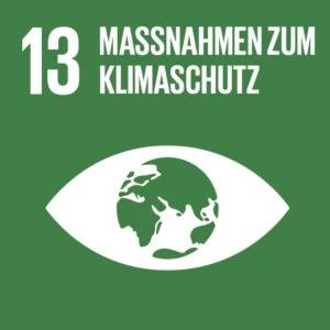 SDG Icon DE 13