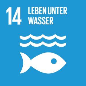 SDG Icon DE 14