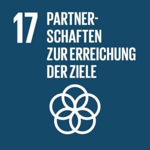 SDG Icon DE 17