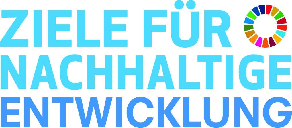 SDG Logo CMYK